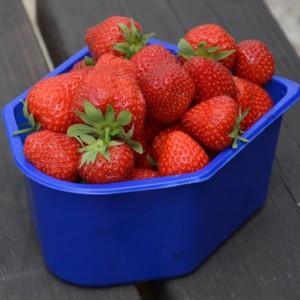 Bak aardbeien